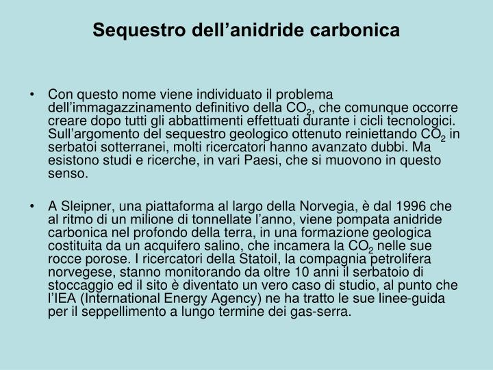 Sequestro dell'anidride carbonica