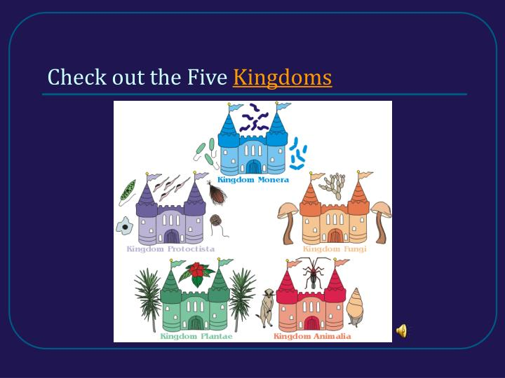 Check out the five kingdoms