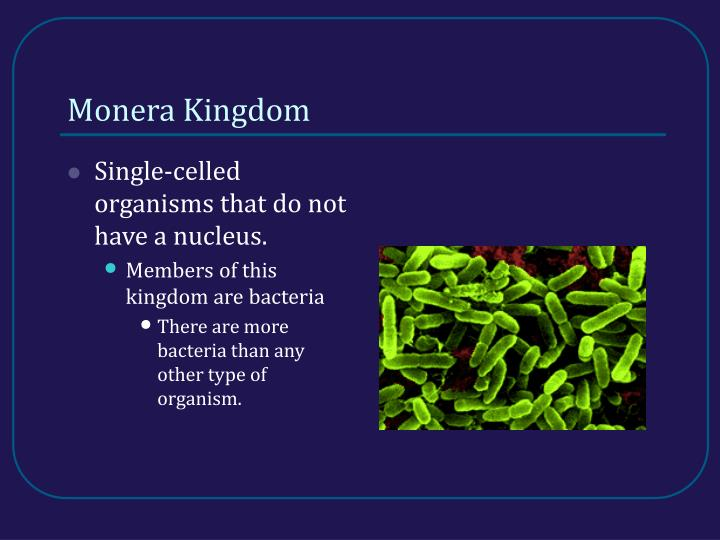 Monera Kingdom