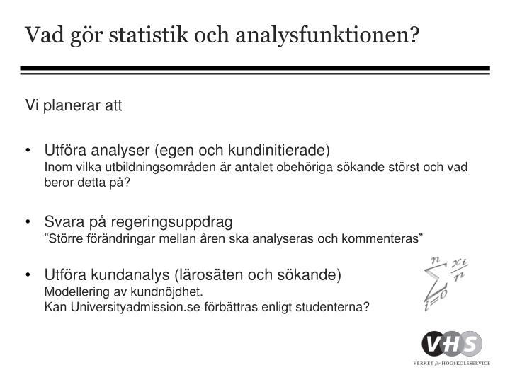 Vad gör statistik och analysfunktionen?