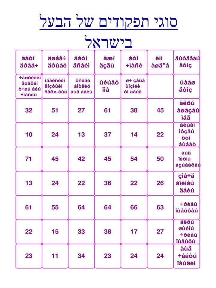 סוגי תפקודים של הבעל בישראל