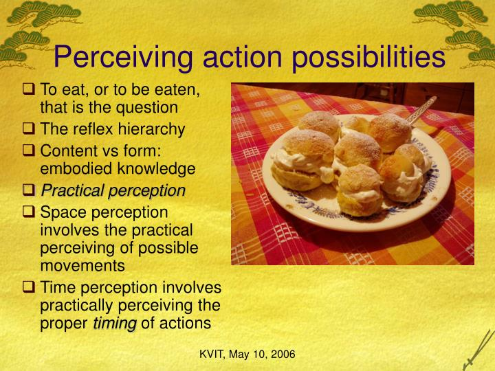 Perceiving action possibilities