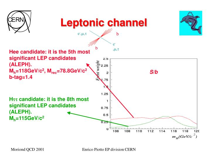 Leptonic channel