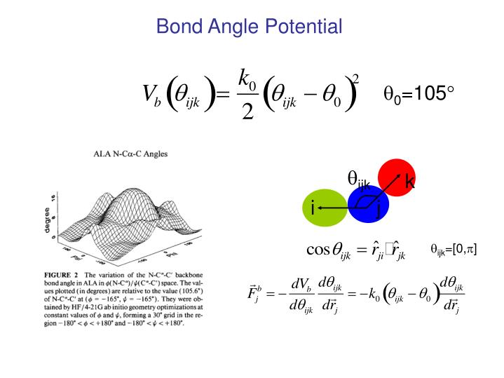 Bond Angle Potential