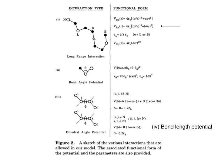(iv) Bond length potential