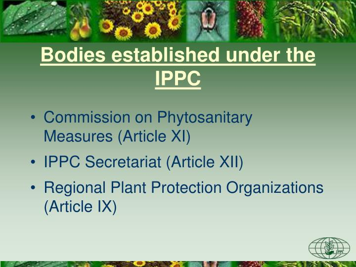 Bodies established under the IPPC