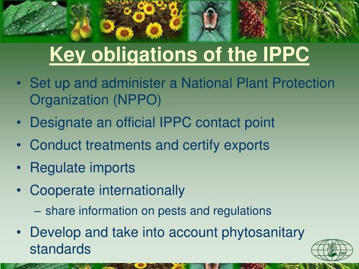 Key obligations of the IPPC