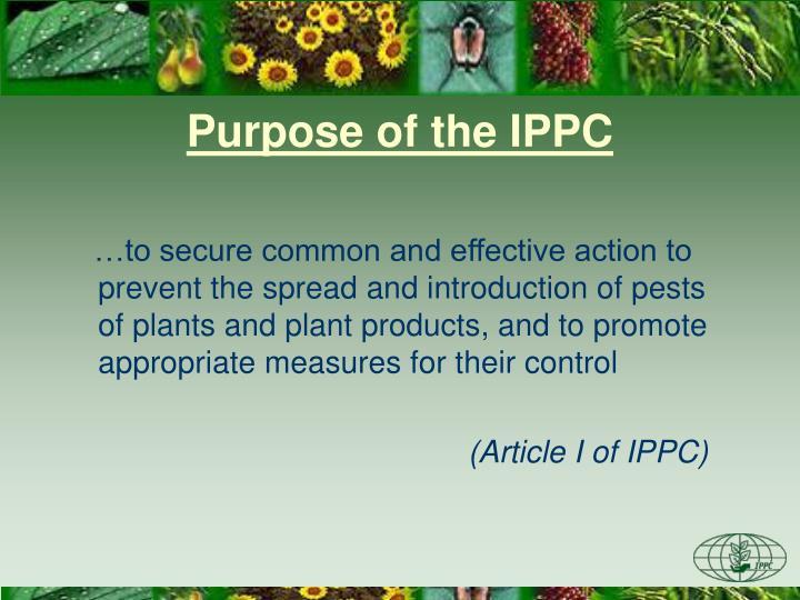 Purpose of the IPPC