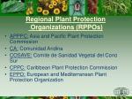 regional plant protection organizations rppos1
