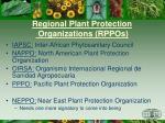 regional plant protection organizations rppos2