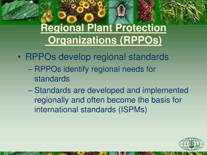 Regional Plant Protection