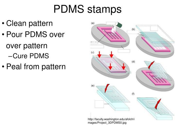 PDMS stamps