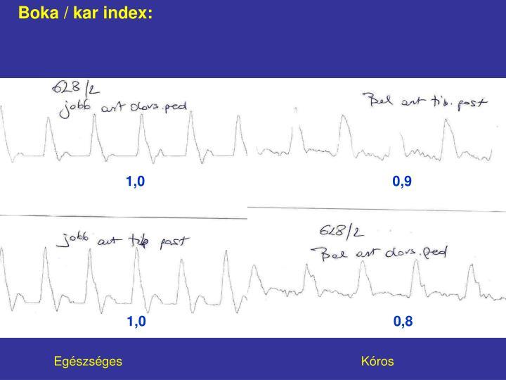 Boka / kar index: