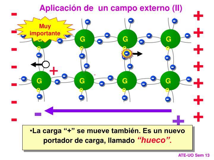 Aplicación de  un campo externo (II)