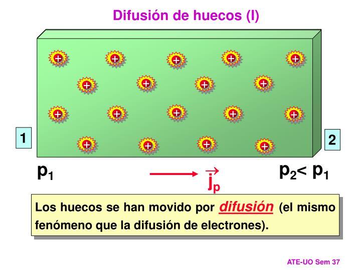 Difusión de huecos (I)