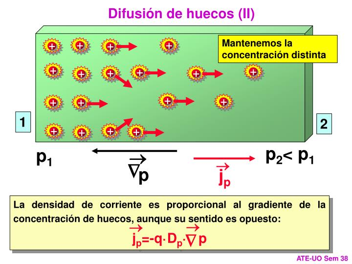 Difusión de huecos (II)