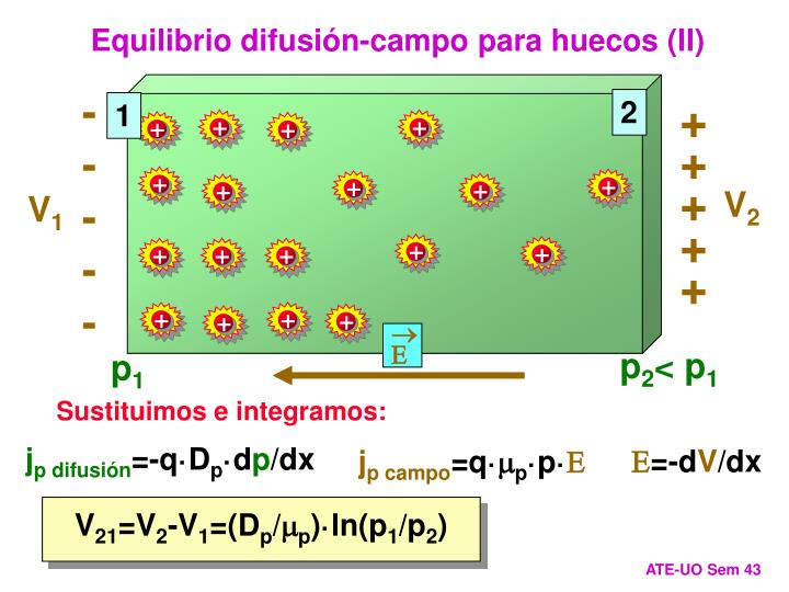 Equilibrio difusión-campo para huecos (II)
