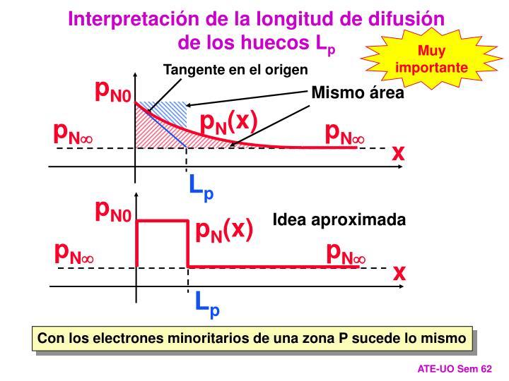Interpretación de la longitud de difusión de los huecos L