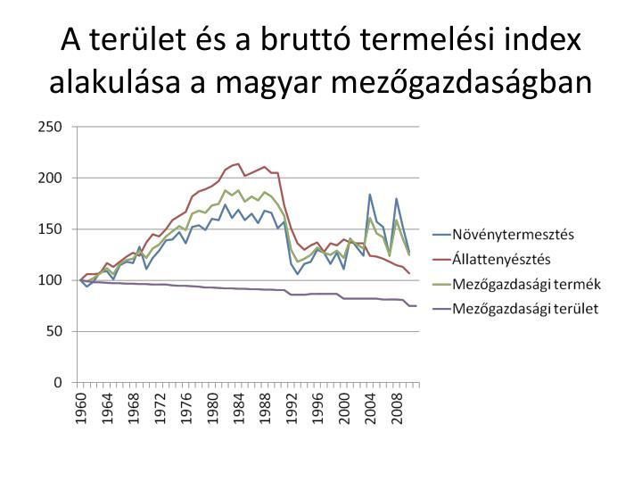A terület és a bruttó termelési index alakulása a magyar mezőgazdaságban