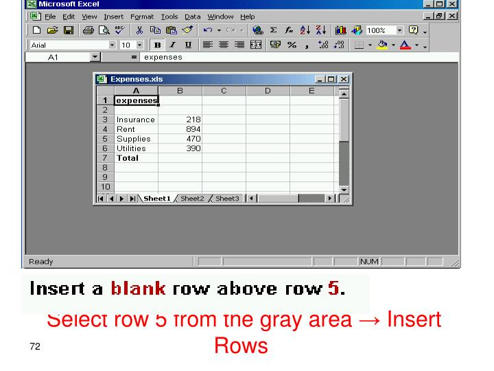 Select row 5 from the gray area → Insert Rows