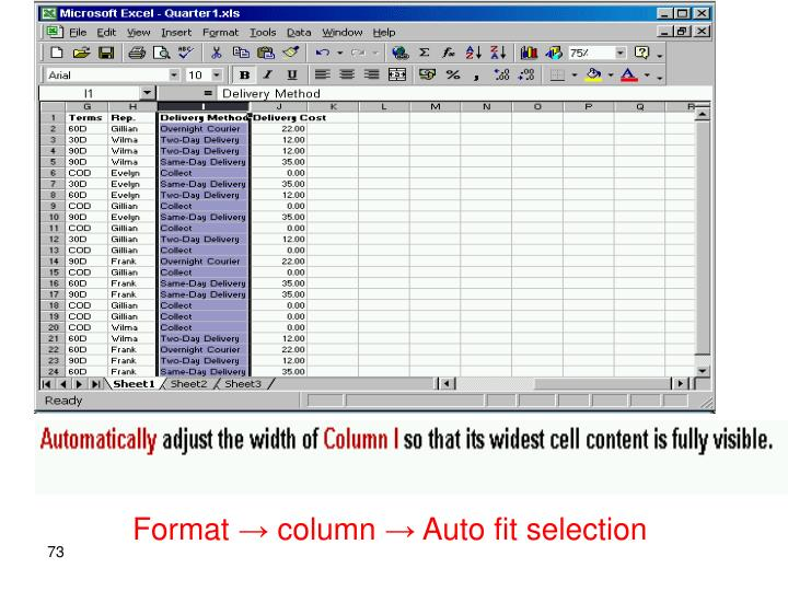 Format → column → Auto fit selection