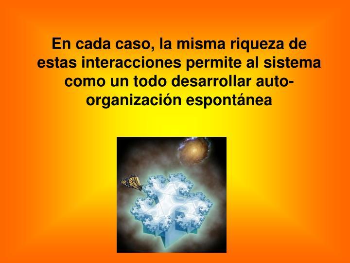 En cada caso, la misma riqueza de estas interacciones permite al sistema como un todo desarrollar auto-organización espontánea