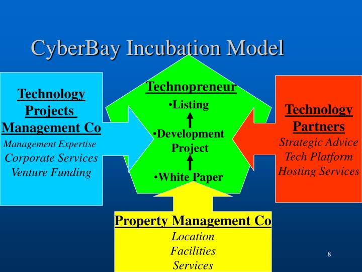CyberBay Incubation Model