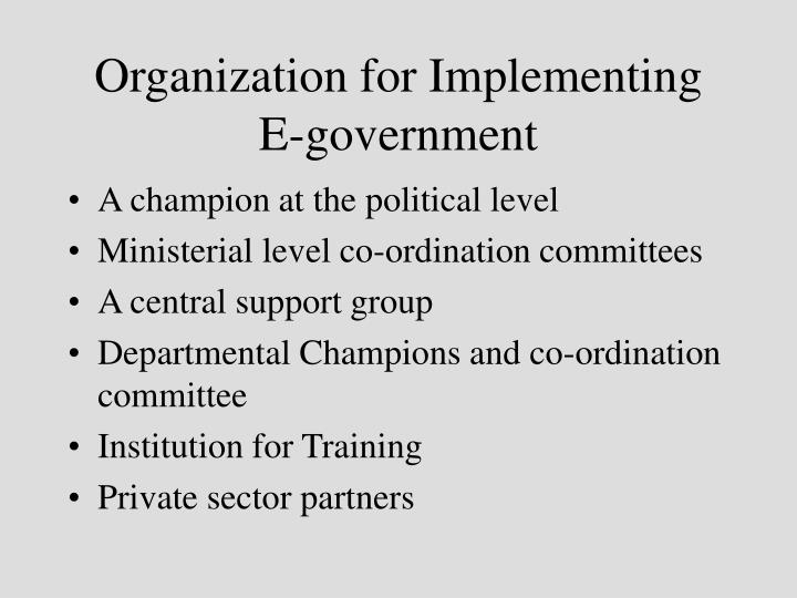 Organization for Implementing E-government