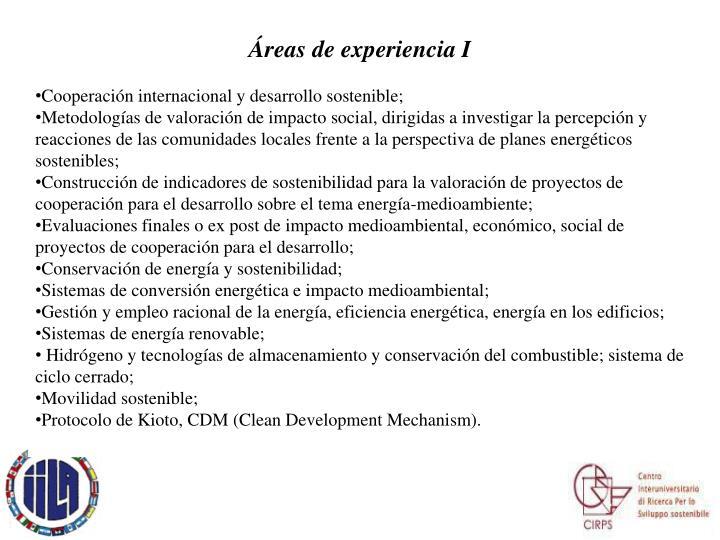 Áreas de experiencia I