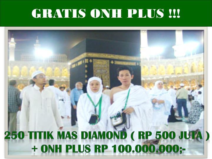 GRATIS ONH PLUS !!!
