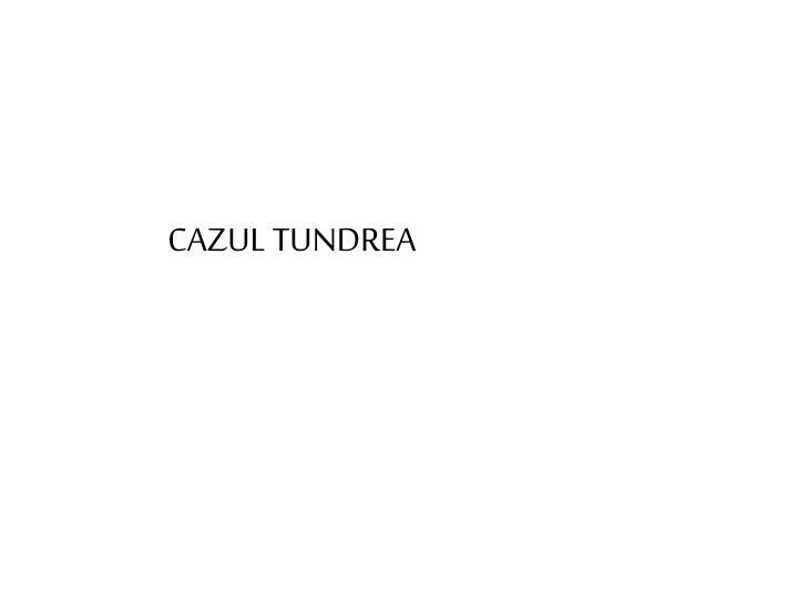 CAZUL TUNDREA