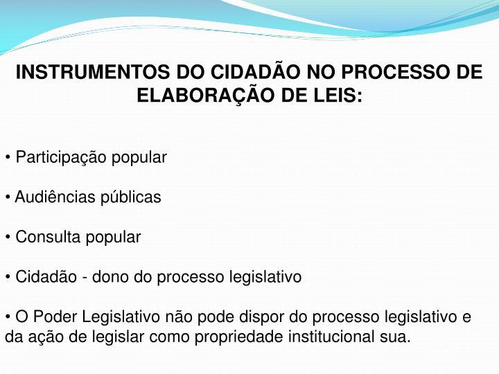 INSTRUMENTOS DO CIDADÃO NO PROCESSO DE ELABORAÇÃO DE LEIS: