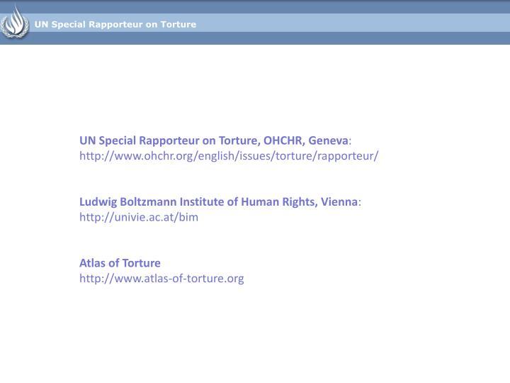 UN Special Rapporteur on Torture
