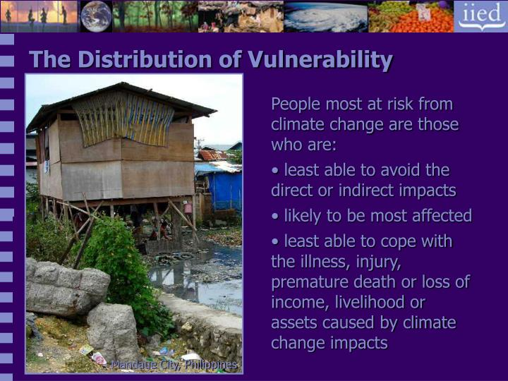 The Distribution of Vulnerability