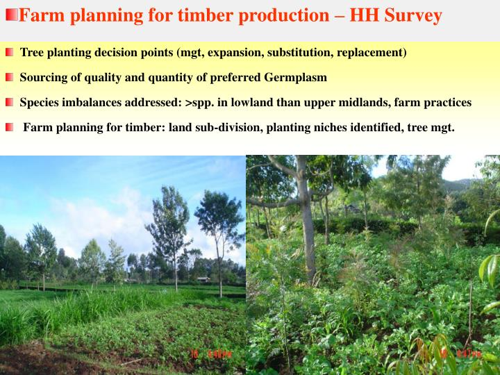 Farm planning for timber production – HH Survey