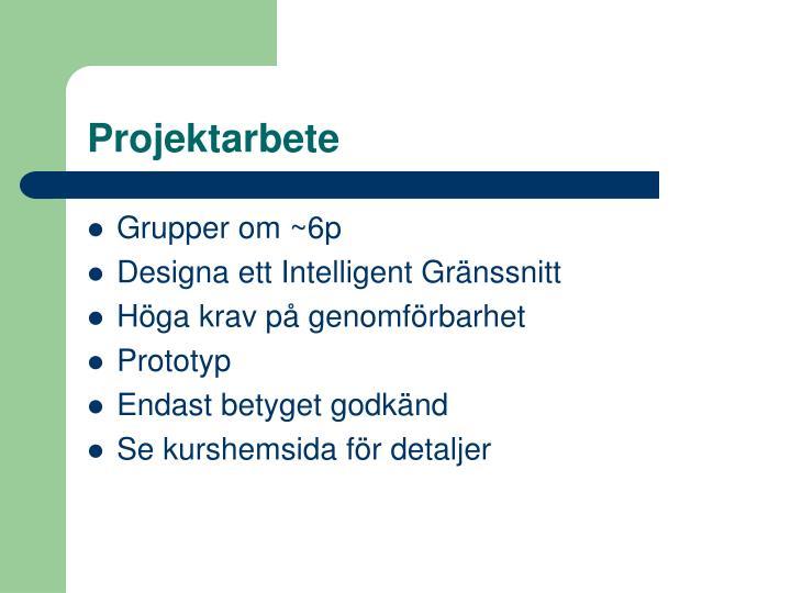 Projektarbete