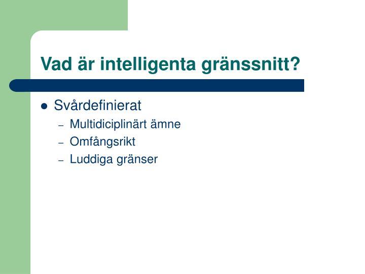 Vad är intelligenta gränssnitt?