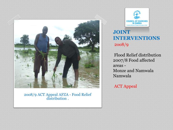 JOINT INTERVENTIONS