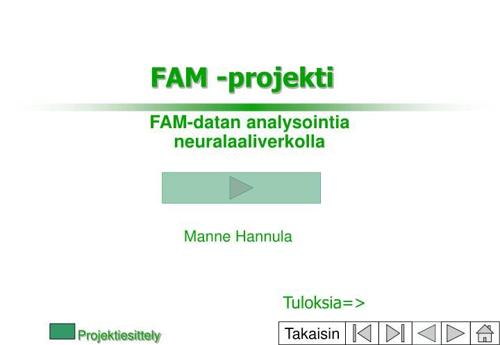 FAM-datan analysointia