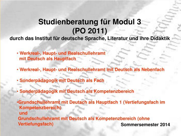 Studienberatung für Modul 3