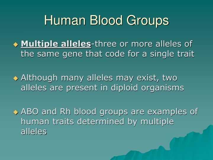 Human Blood Groups