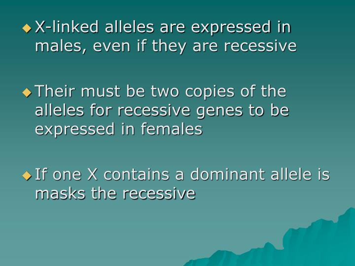 X-linked alleles are expressed in males, even if they are recessive