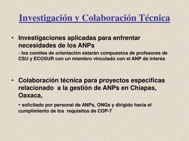 Investigación y Colaboración Técnica