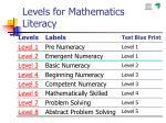 levels for mathematics literacy
