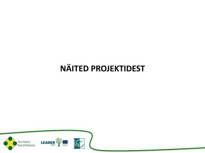 NÄITED PROJEKTIDEST