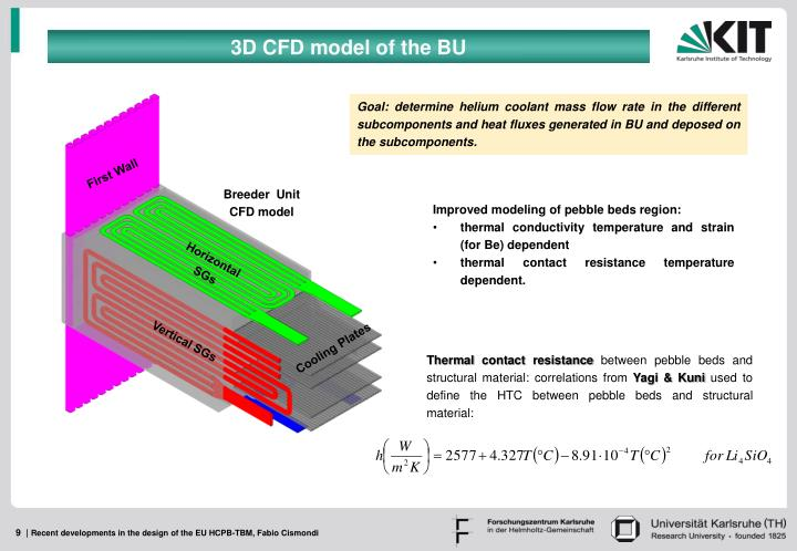 3D CFD model of the BU