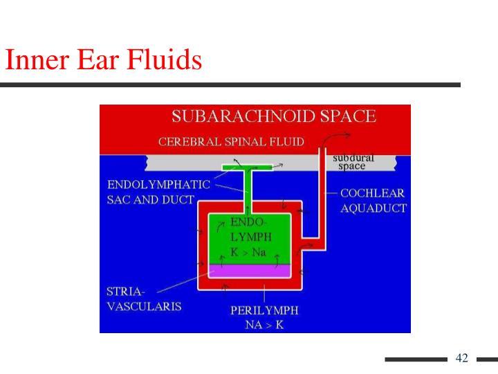 Inner Ear Fluids