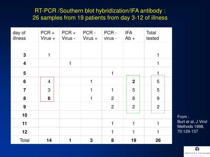 RT-PCR /Southern blot hybridization/IFA antibody :