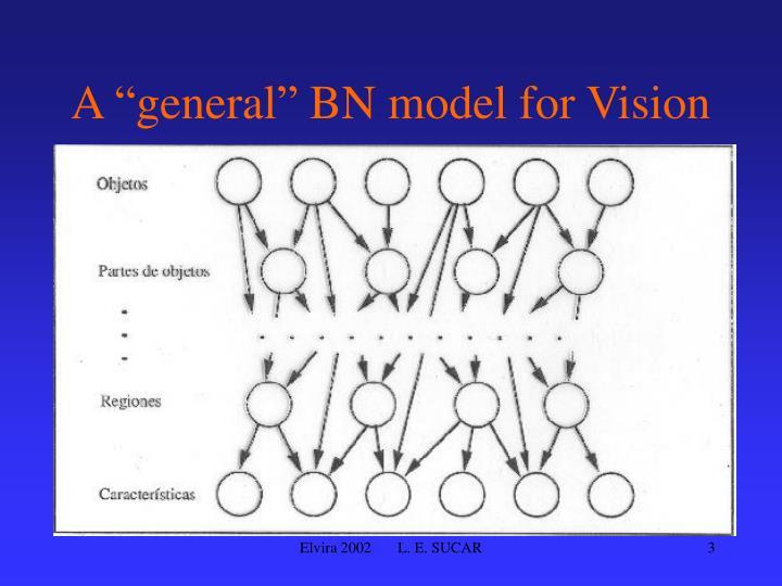"A ""general"" BN model for Vision"