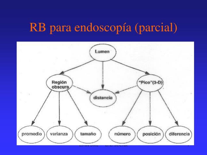 RB para endoscopía (parcial)